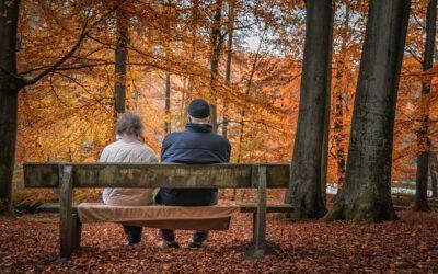 Avis du Comité de suivi des retraites : il est urgent d'attendre !